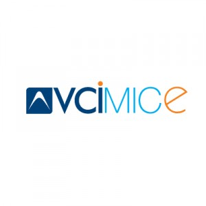 Corporate Logo Design, Logo Design Agency of India, vcimice logo